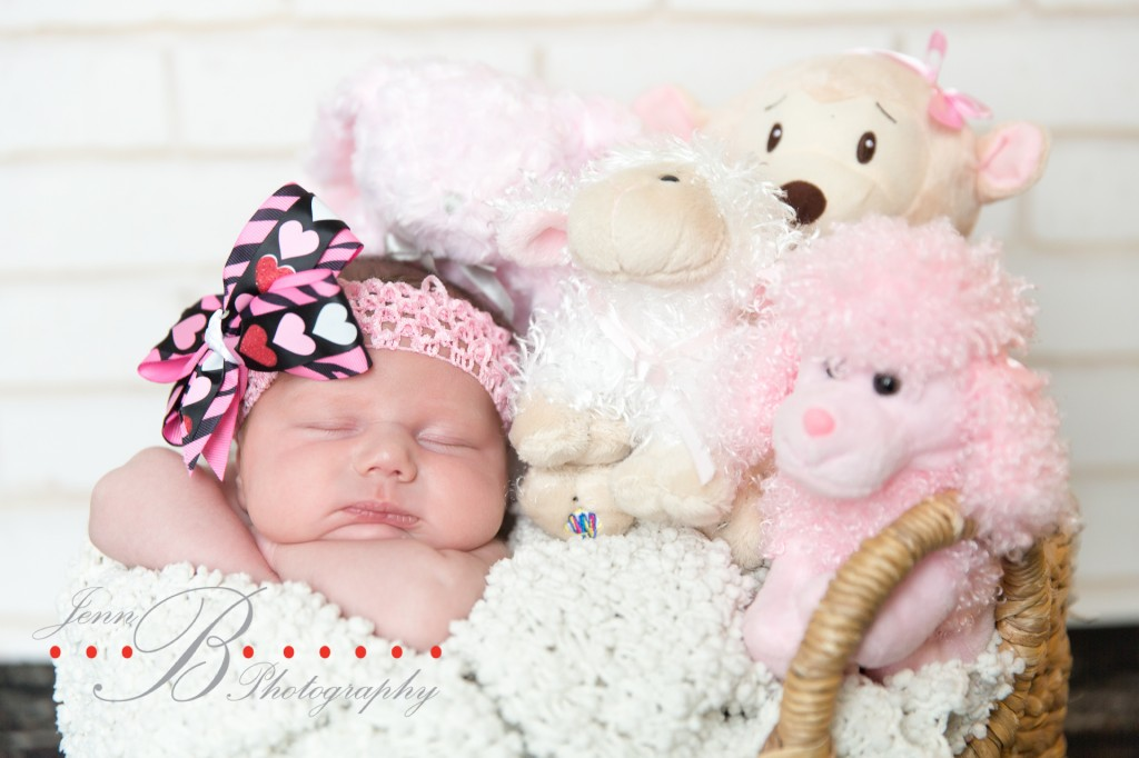 barrienewbornphotographer-1